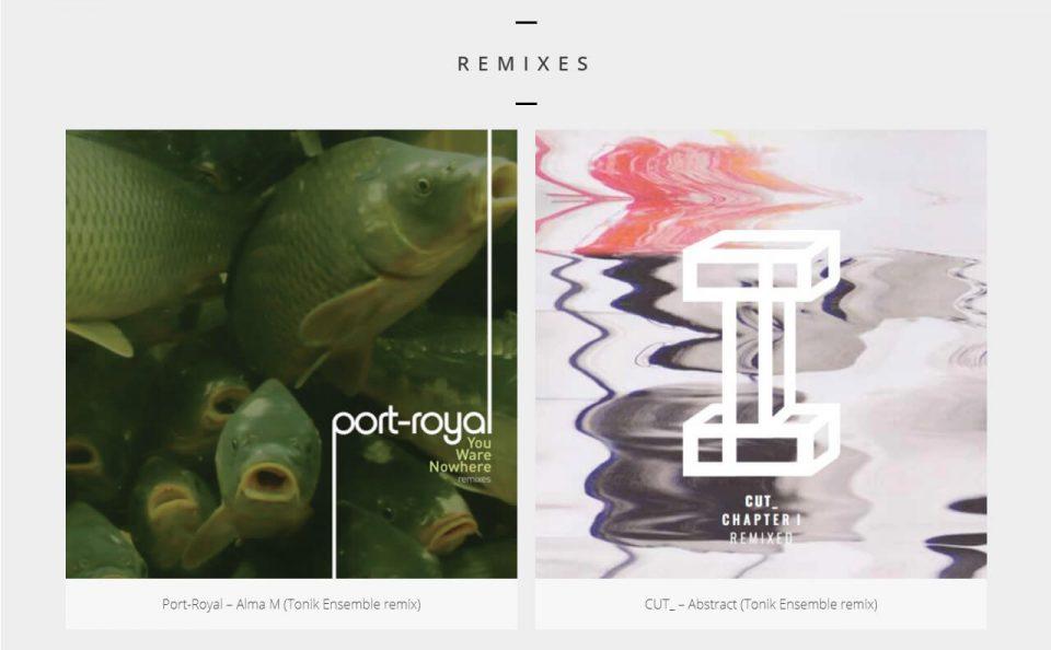 Tonik Ensemble — Iceland electronic artist Tonik EnsembleのWEBデザイン