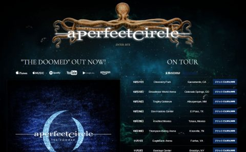 A Perfect CircleのWEBデザイン