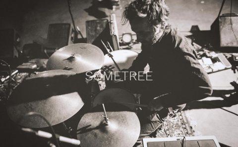 SometreeのWEBデザイン