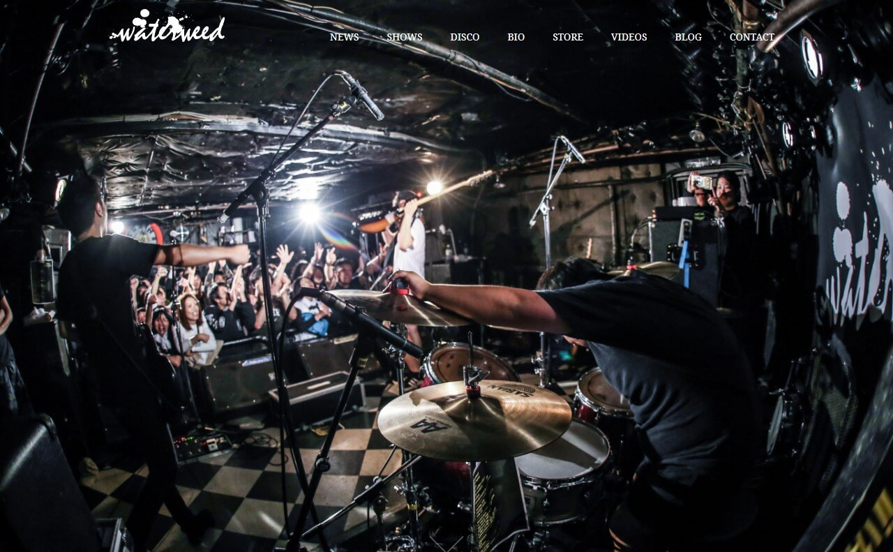 waterweed Official WebsiteのWEBデザイン