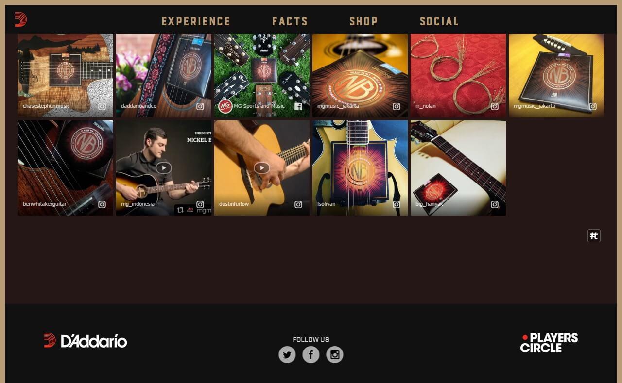 D'Addario Nickel Bronze Acoustic Guitar StringsのWEBデザイン