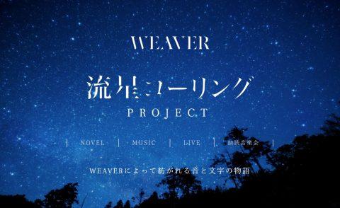 流星コーリング|WEAVER 河邉徹のWEBデザイン