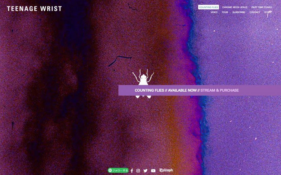 Teenage Wrist | Counting FliesのWEBデザイン