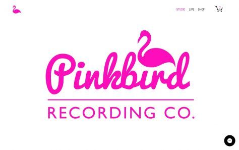 Pink Bird Recording Co. | East LondonのWEBデザイン