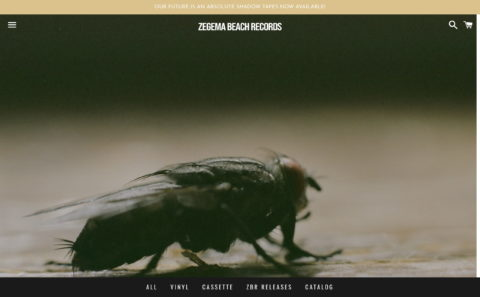 Zegema Beach Records – ZEGEMA BEACH RECORDSのWEBデザイン